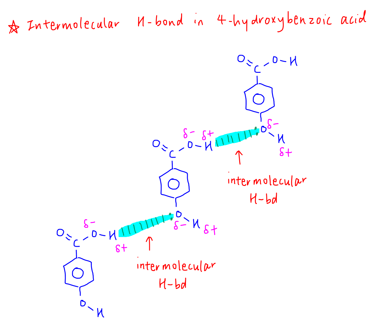 Intramolecular vs Intermolecular Hydrogen Bond